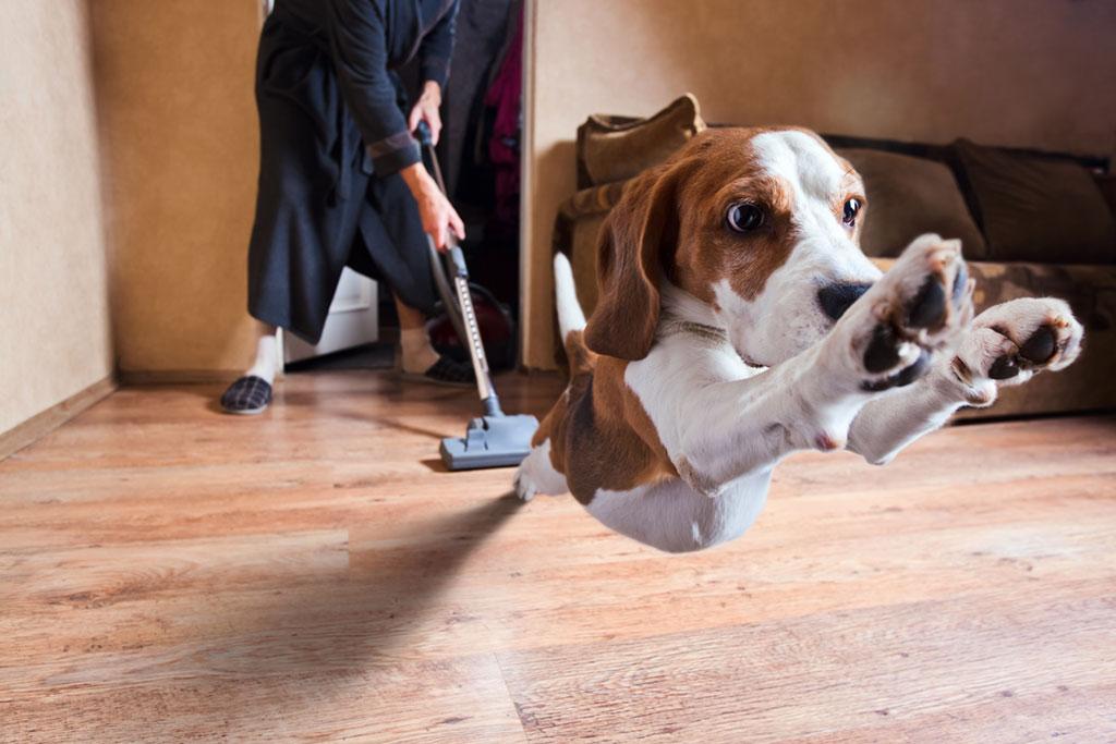 Pulire il pavimento in legno Sommariva Casa