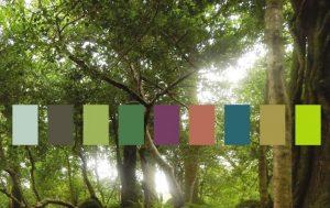 La palette Pantone Forest Bathing